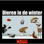 3426 dieren in de winter(h) copy