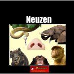 3428 neuzen (h) copy