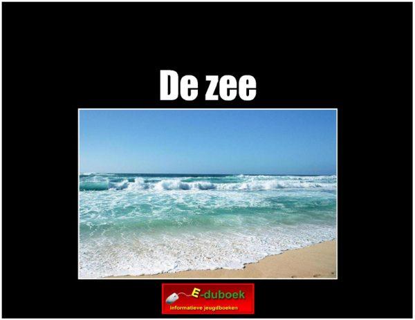 3467de_zee copy