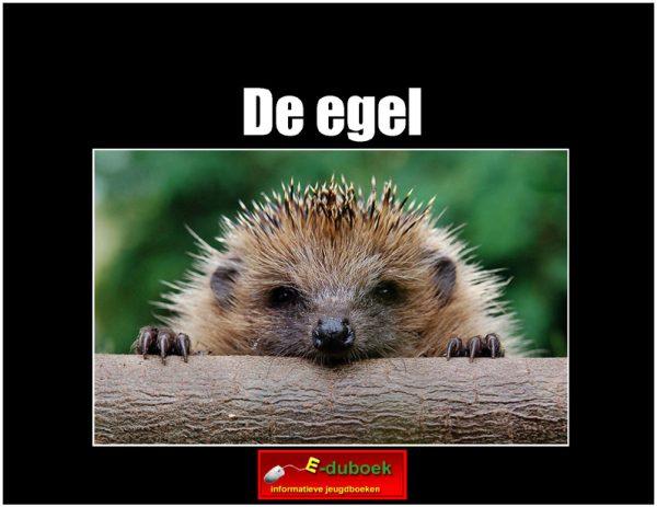 3473de_egel copy