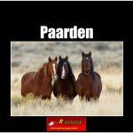 5605 Paarden (h) copy