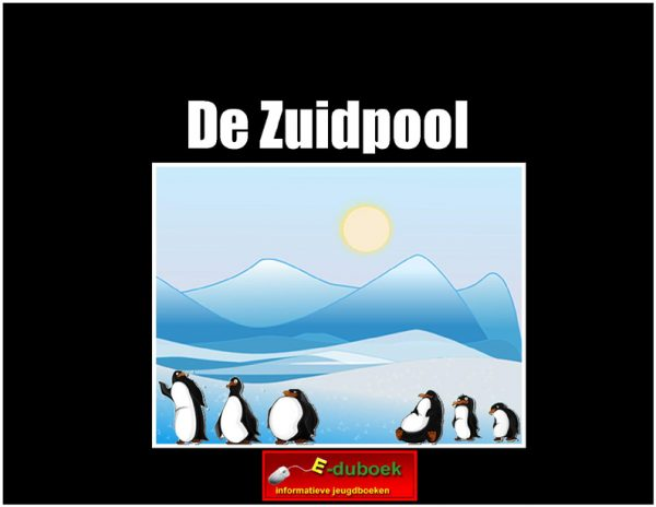 56107De_Zuidpool copy