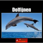 5617 dolfijnen (h) copy