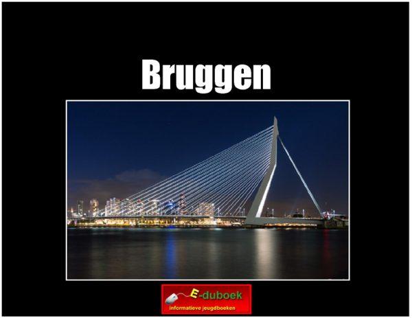 5629 bruggen (h) copy