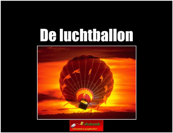 5671de_luchtballon copy