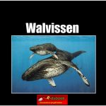 5676walvissen copy