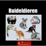 5680buideldieren copy