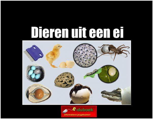 5691dieren_uit_een_ei copy
