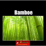 7821 bamboe(h) copy