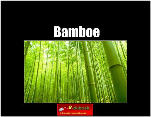 7821 bamboe(h) copy