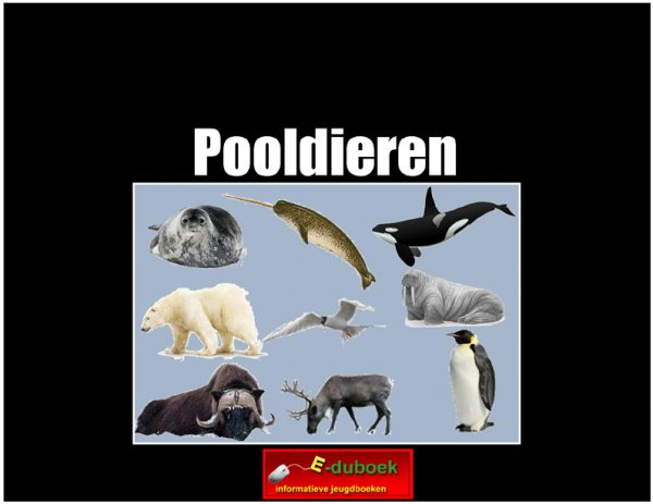 7876pooldieren copy