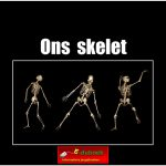 7894ons_skelet copy