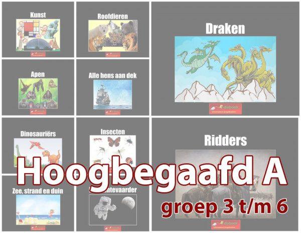 Hoogbegaafd-A