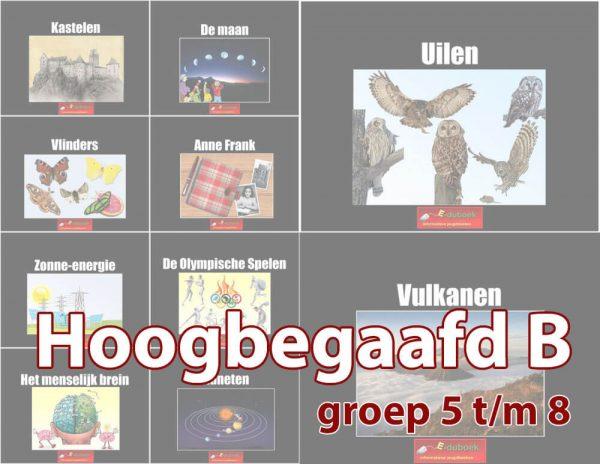 Hoogbegaafd-B