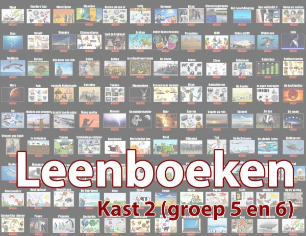 Leenboeken-kast-2