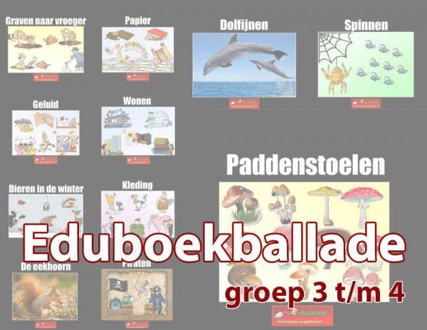 eduboekballade-groep-3-4