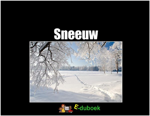 78110 sneeuw voorkant