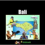 78113 Bali vk