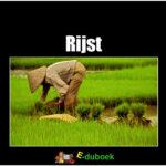 36115 rijst voorkant