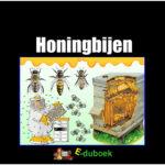 7842 honingbijen voorkant
