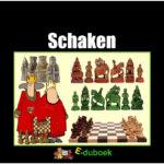 7854 schaken vk